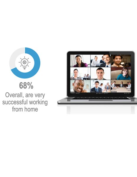 Global Work-from-Home Experience Survey Report (2020)