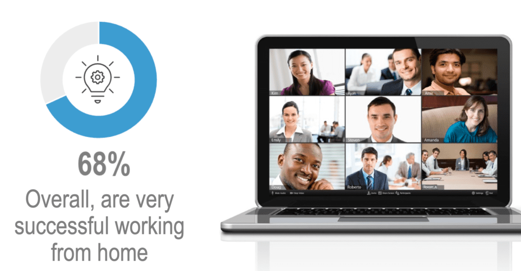 Global Work-from-Home Experience Survey